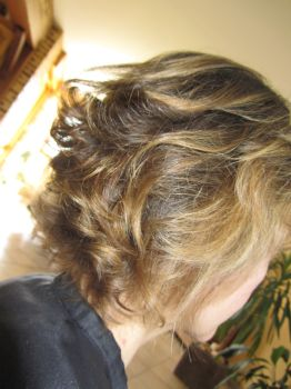 Les cheveux de la photo et le traitement