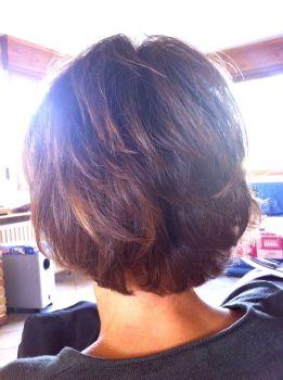 Couleurs vegetales cheveux blancs